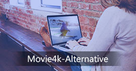 Die besten Movie4K Alternativen