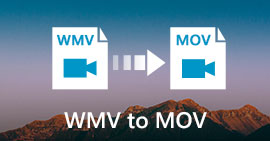WMV to MOV Converter